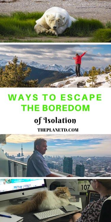 escape the boredom of self isolation