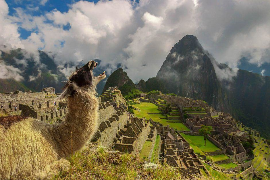 things to do in Peru Machu Picchu