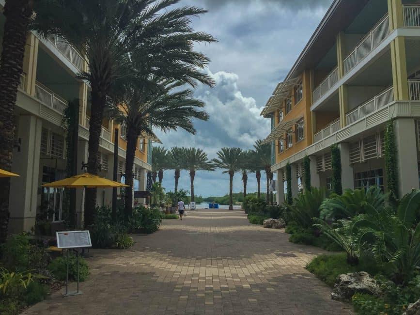 grand cayman island things to do camana bay