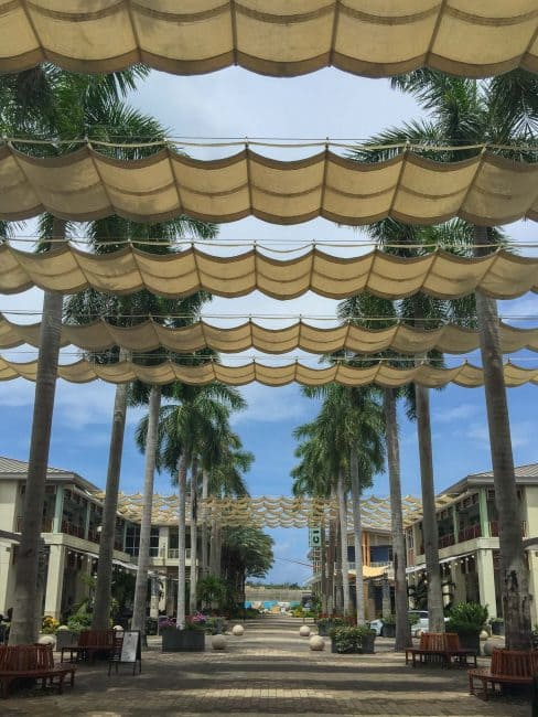 what to do in the cayman islands camana bay