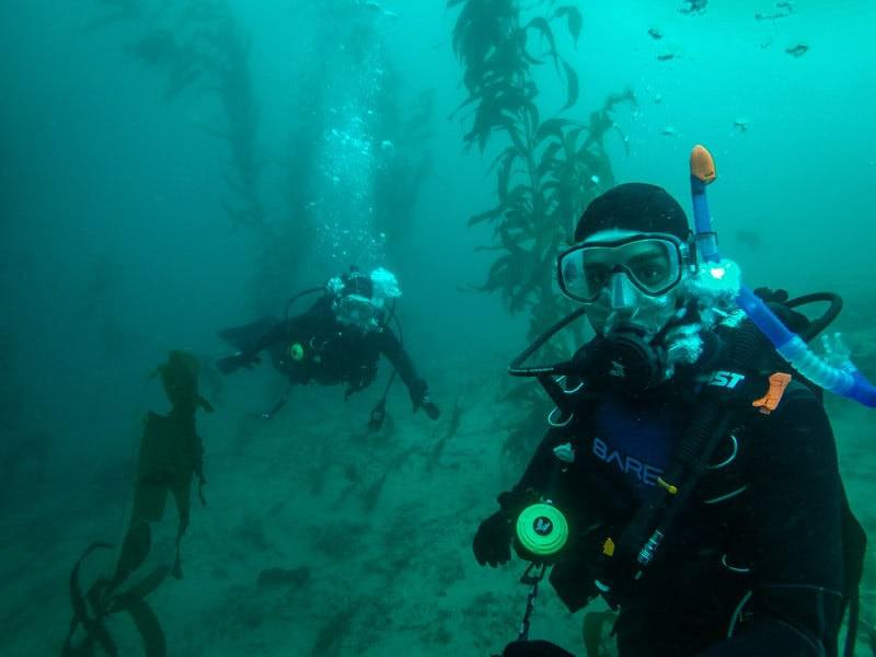 Where to stay in San Diego Scuba Diving