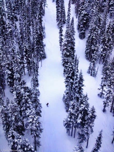 deserted runs at Whistler Blackholm snowboarding
