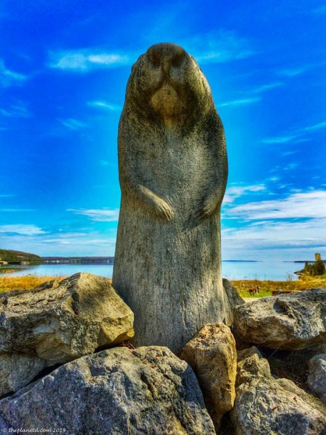 wiarton willy statue