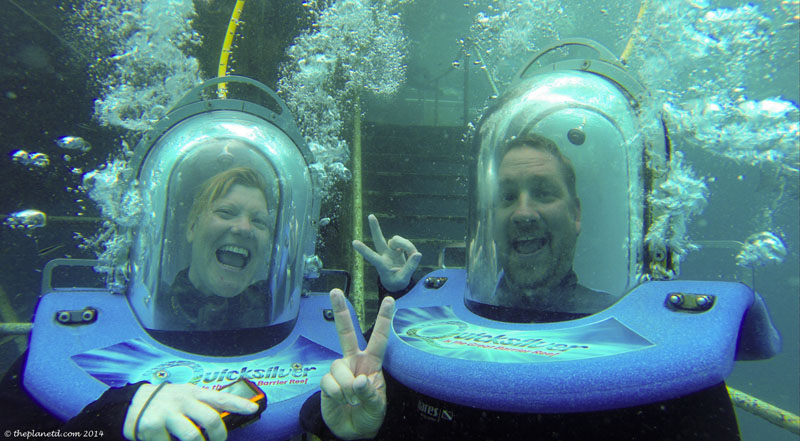 diving travel year