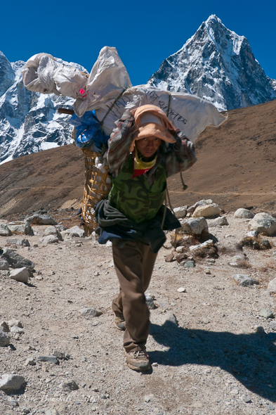 sherpa carrying a large load