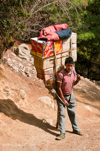 young sherpa boy carries heavy load in Nepal