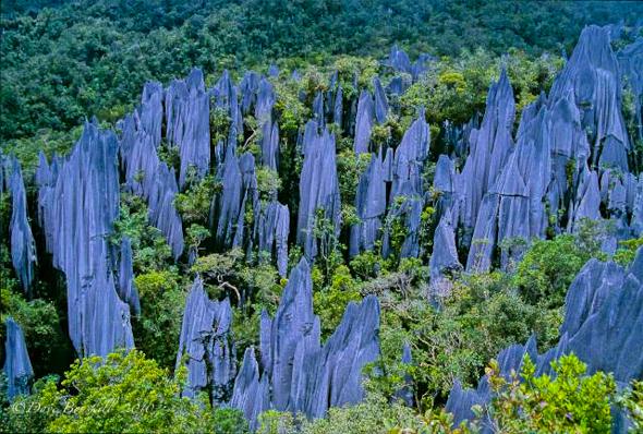 the pinnacles in Sarawak Malaysian Borneo