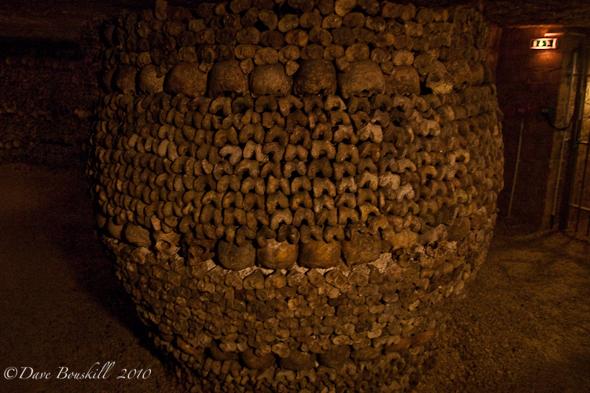 Literally a barrel of bones!