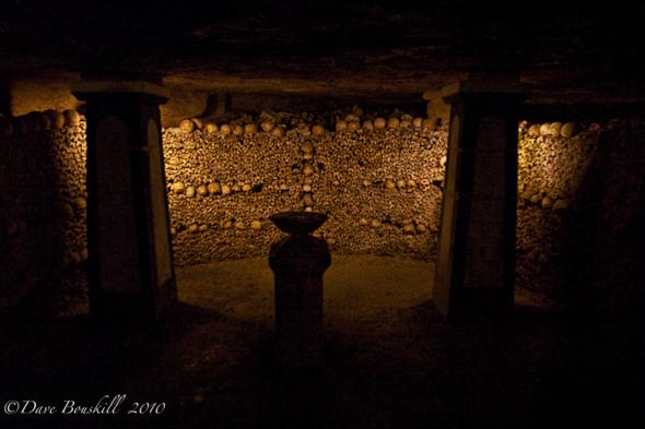 Bones and skulls everywhere!
