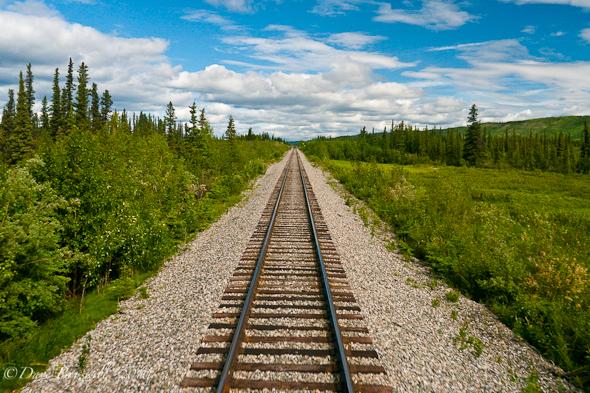 Rolling down the Alaska Railway