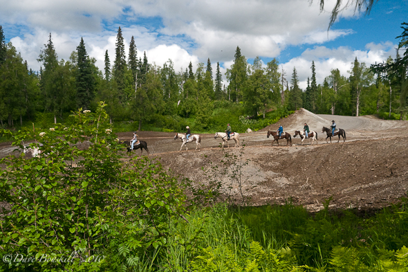 Alaskan-Trail-Ride-Horseback-Happy-Trails
