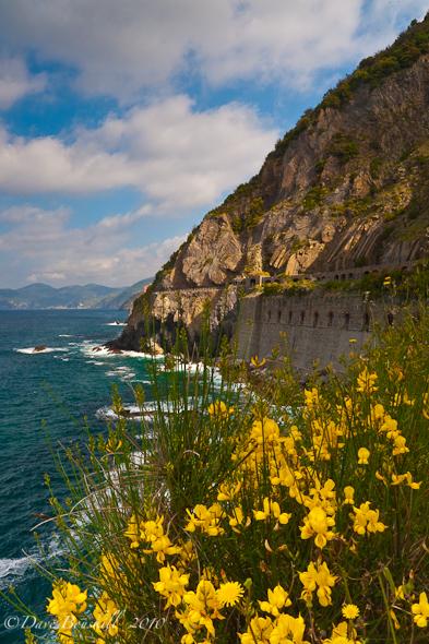 Cinque Terre-Five Villages-Riomaggiore
