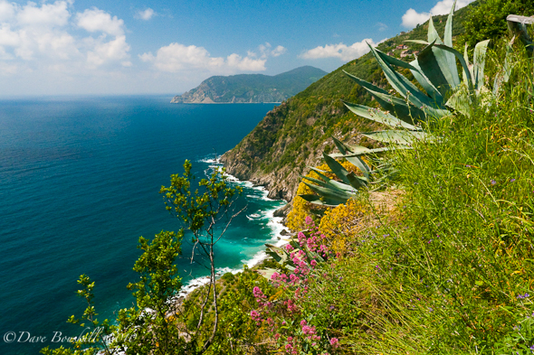 Cinque Terre, Italy's Riviera