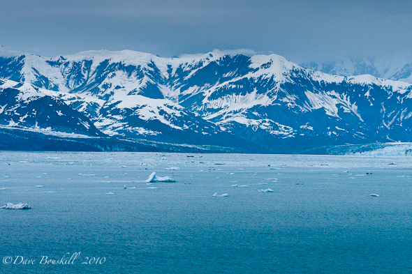 Princess-Cruises-Coral-Princess-Alaska-Glacier