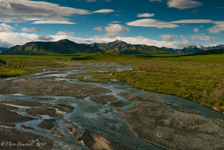 Landscape of Denali National Park, Alaska