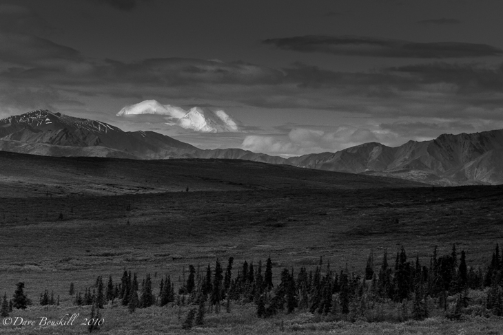 Wilderness-Alaska-Denali-National Park